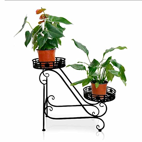 2 Tier Flower Stand Indoor Outdoor Plant Pot Rack Metal Planter Decoration Display Holder Garden Patio Standing Floor Support Stand Succulents Herb Bonsai Shelf (Color:Black) -