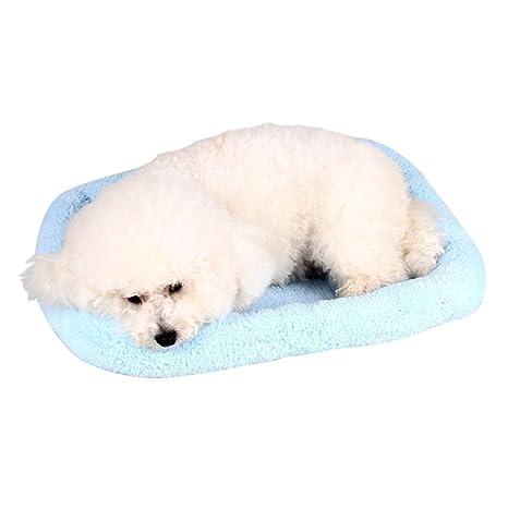 zuckerti cama para perros Perros Cojín perro Sofá Cama cesta perros y gatos animales cama para