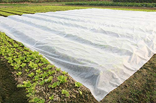 PHI VILLA Frost Blanket Plant Cover Floating Row Cover, 1.5 oz, 10'x100' by PHI VILLA (Image #4)