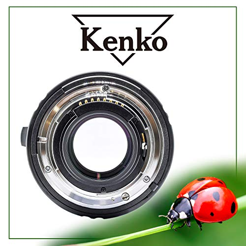 Kenko 1.4X PRO 300 Teleconverter DGX Nikon AF Digital SLRs (Best Raw Converter For Nikon)