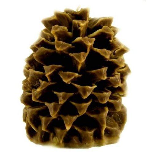 (Aspen Bay Candle Cinnamon Beignet Pineapple Pinecone by Aspen Bay)
