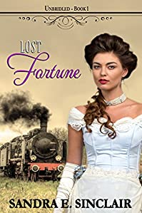 Lost Fortune by Sandra E Sinclair ebook deal