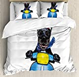 Ambesonne Dog Driver Queen Size Duvet Cover Set, Quirky French Bulldog on Scooter with Helmet Goggles Rocker Puppy, Decorative 3 Piece Bedding Set with 2 Pillow Shams, Charcoal Grey Cobalt Blue