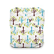 Thirsties Natural One Size All In One Cloth Diaper, Snap Closure, Blackbird