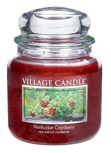 Village Candle Nantucket Cranberry 16 oz Glass Jar Scented Candle, Medium