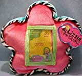 Lizzie Mcguire Flower Power Pillow Photo Frame Great Colors Cool Pictures