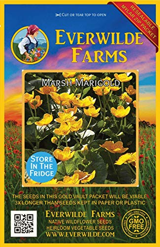 Everwilde Farms - 300 Marsh Marigold Native Wildflower Seeds - Gold Vault Jumbo Seed Packet