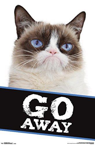 Trends International Grumpy Cat Go Away Wall Poster 22.375