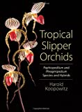 img - for Tropical Slipper Orchids: Paphiopedilum and Phragmipedium Species and Hybrids book / textbook / text book
