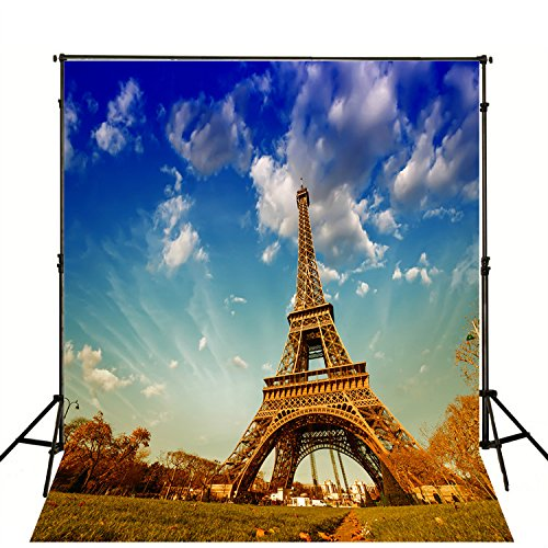 8X10ft Studio Background for Studio Props Blue Sky Grass Eiffel Tower without Wrinkle Thicker by L2Gshop