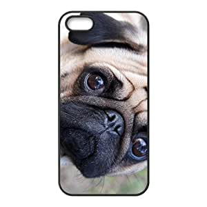 Curious Dog Hot Seller Stylish High Quality Hard Case For Iphone 5S
