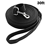 Jackpet Long Dog Leash Free Range 30 Foot 1Inch Wide Nylon Training Lead Pet Puppy Handles, for Yards 30ft with Stake Medium and Large Dog (Black)