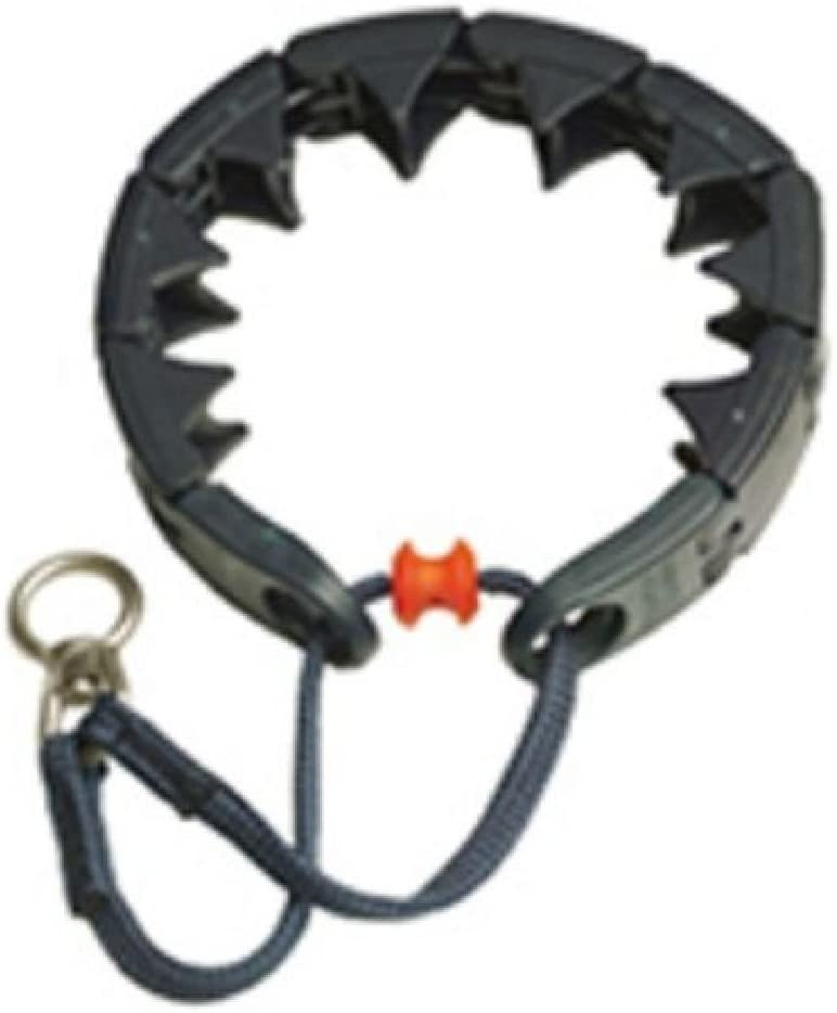 starmark Triple Corona Collar de adiestramiento para perro pequeño ...