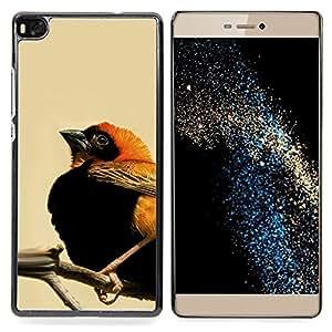 - Cute Orange & Black Bird - - Cubierta del caso de impacto con el patr??n Art Designs FOR HUAWEI P8 Queen Pattern