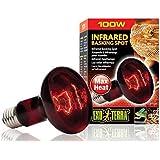 Amazon Com Zoo Med Nocturnal Infrared Incandescent Heat Lamp 75 Watts Pet Habitat Heat Lamps