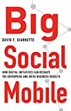 Big Social Mobile : How Digital Initiatives Can Reshape the Enterprise and Drive Business Results, Giannetto, David F., 1137410396