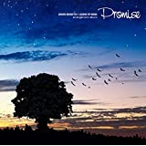 聖剣伝説 LEGEND OF MANA Arrangement Album -Promise-