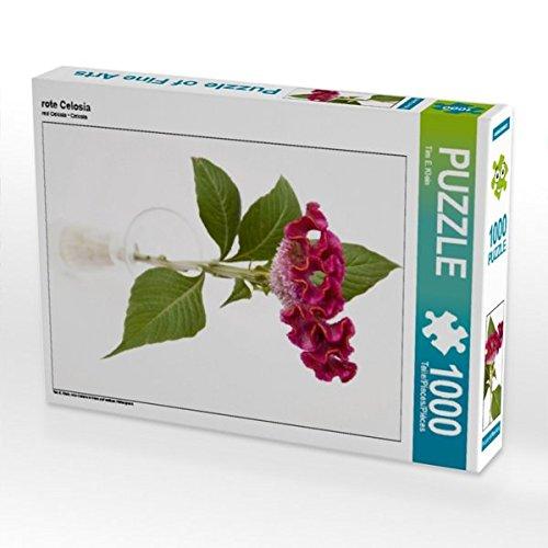 Rote Celosia 1000 Teile Puzzle Hoch
