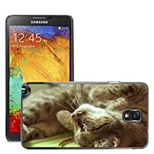 Super Stella Slim PC Hard Case Cover Skin Armor Shell Protection // M00148966 Cat Bed Back Kitty // Samsung Galaxy Note 3 III N9000 N9002 N9005