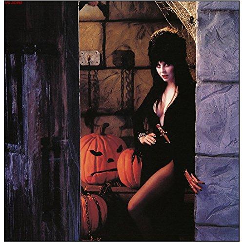 Cassandra Peterson is Elvira Ready for Halloween 8