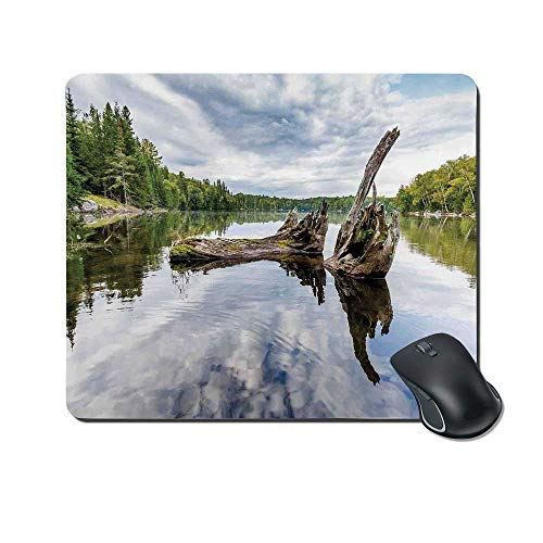 (Driftwood Decor Durable Mouse Pad,Remains of a White Cedar Tree Trunk in Lake and The Sky Digital Image for Office Home,9.4