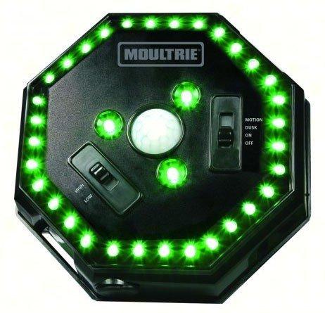Moultrie Feeder Hog Light Game Feeder (3 Pack)
