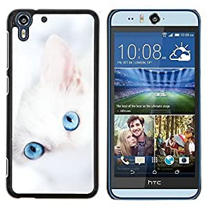 - CLEAN BABY CUTE BLUE WINTER KITTEN WHITE - Caja del tel¨¦fono delgado Guardia Armor- For HTC Desire EYE M910x Devil Case