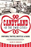 Candyland in the Twin Cities, Susan M. Barbieri, 1626193630