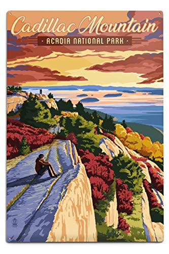Lantern Press Acadia National Park, Maine - Cadillac Mountain Illustration (12x18 Aluminum Wall Sign, Metal Wall Decor Ready to Hang) Cadillac Mountain Acadia National Park