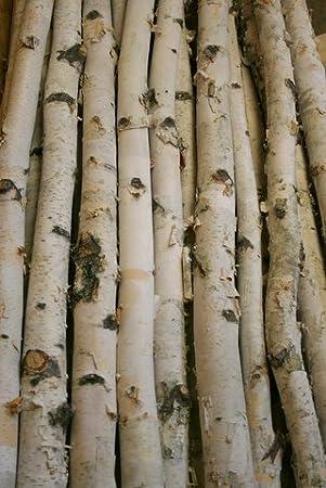 Amazon.com: Decorative Birch Poles 8 Ft Long (2 Poles, 3''- 4'' Diameter):  Arts, Crafts & Sewing