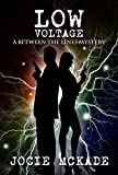 Low Voltage (Between the Lines - A Humorous Mystery Book 2)