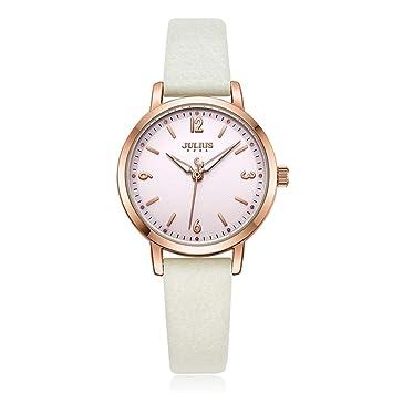 LMHQLNM Relojes para Mujer Impermeable Tendencia de Moda Minimalista Red Red Reloj para Mujer, Blanco