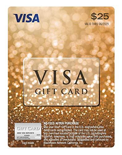 25-Visa-Gift-Card-plus-395-Purchase-Fee