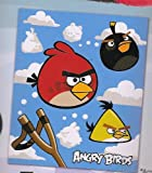 Rovio Angry Birds Slingshot Silk Touch Throw