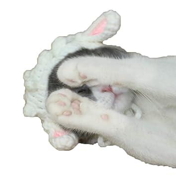 Tapa para mascota con diseño de dibujos animados, sombrero para mascota hecho a mano,