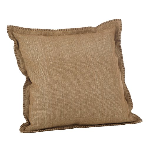 SARO LIFESTYLE Celena Collection Whip Stitched Flange Design Down Filled Throw Pillow, 20
