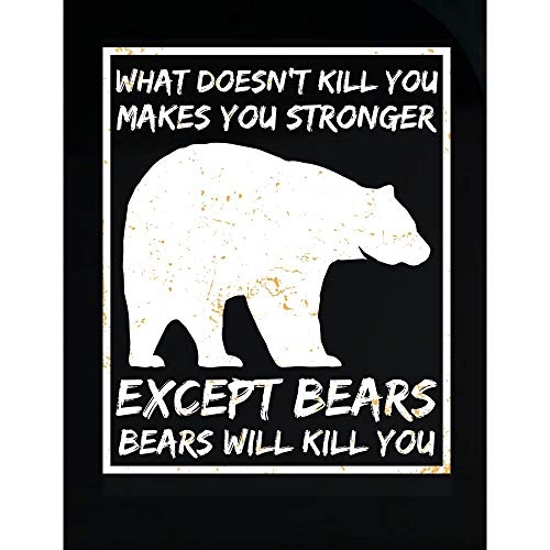 Funny Brown Bear - What Doesn't Kill You - Bears Will Kill - Humor - Transparent Sticker