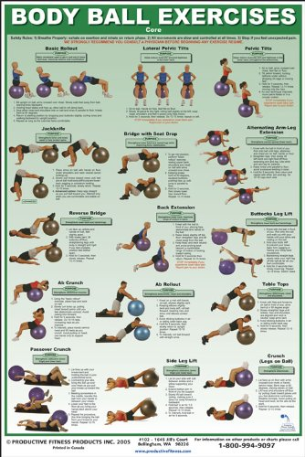 Power Systems Body Ball Exercise Chart for Core, 15 Core Stability Ball Exercises, Full-Color Laminated Poster, 24 x 36 Inches (79930)