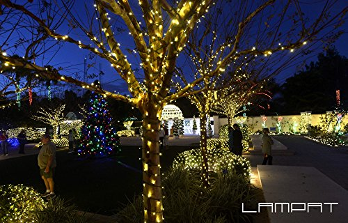 Top 10 Best Extension Poles For Christmas Lights Best Of