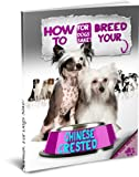 How to Breed your Chinese Crested Responsibly