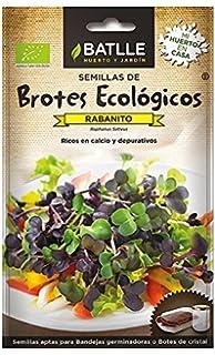 Té Verde natural Sencha BIO 200g - orgánico: Amazon.es ...
