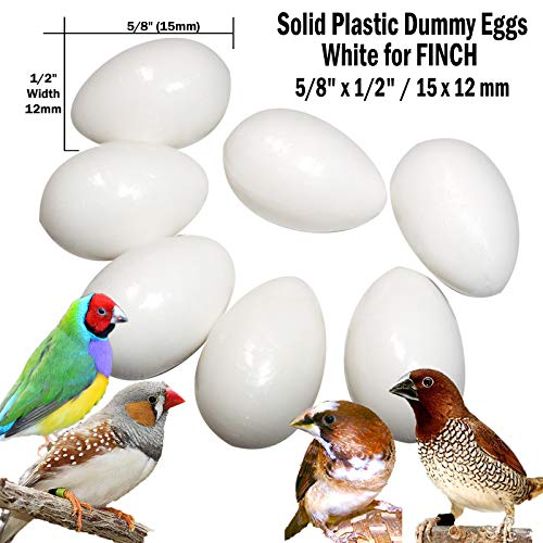 (DummyEggs Stop Egg Laying! 7 White Finch Fake Bird Eggs. Solid Plastic Realistic Shape - 5/8
