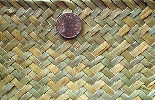 Green Tonga Tropical Matting Roll-Seagrass Herringbone Weave Wallcovering