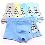 2-8 Years Boy's Penguin Boxer Briefs Organic Cotton Underwear Multipack 5 Pack