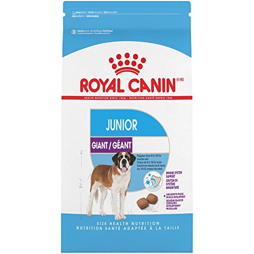 Royal Canin Health Nutrition Giant Junior Dry Dog Food, 30-Pound, For Puppies from 8 to 18/24 Months(Packaging may vary)