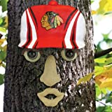 NHL Chicago Blackhawks Resin Tree Face Ornament
