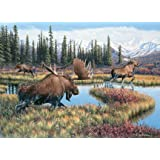 Moose Travels - 1000 Piece Puzzle