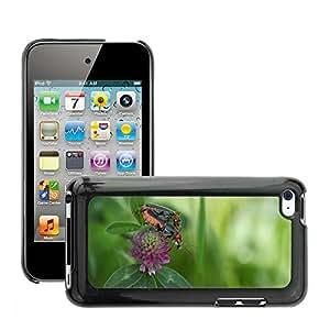 Etui Housse Coque de Protection Cover Rigide pour // M00115185 Escarabajo Insecto emparejamiento Macro // Apple ipod Touch 4 4G 4th