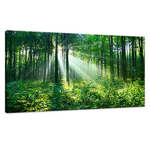 (Canvas Wall Art Green Forest Wall Decor Nature Painting Large Artwork Pictures Green trees Woods Landscape for Living Room Office Home Bedroom Fantastic Decor of Sunshine Peeking Through Rainforest)