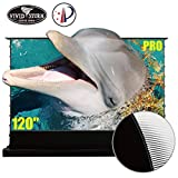 VIVIDSTORM Stand Floor Motorized Electric Screen